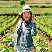 刘慧 Sophie Liu